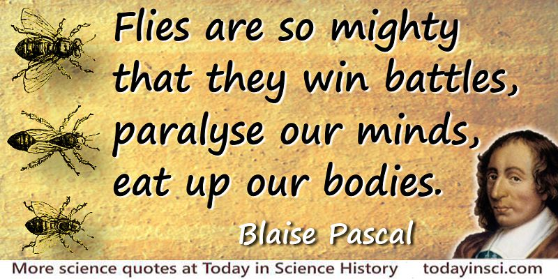 Blaise Pascal quote Flies are so mighty
