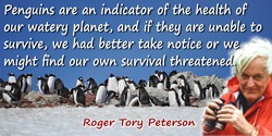 Roger Tory Peterson quote: Penguins are an indicator of the health of our watery planet, and if they are unable to survive, we h