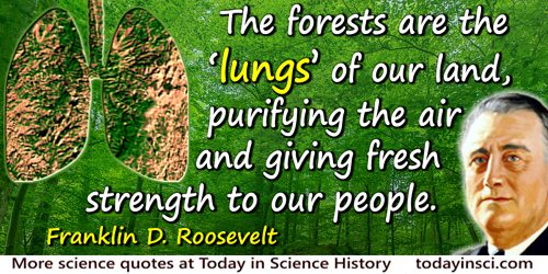 "Franklin D. Roosevelt quote: The forests are the ""lungs"" of our land, purifying the air and giving fresh strength to our people."
