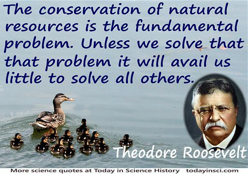 Theodore Roosevelt quote �The conservation of natural resources is the fundamental problem� + ducks on water background