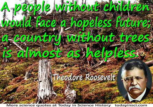 Theodore Roosevelt quote �people without children would face a hopeless future�without trees�as helpless� tree stump background