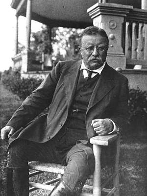 Photo of Theodore Roosevelt, seated, outside his home