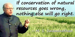 M. S. Swaminathan quote If conservation … goes wrong
