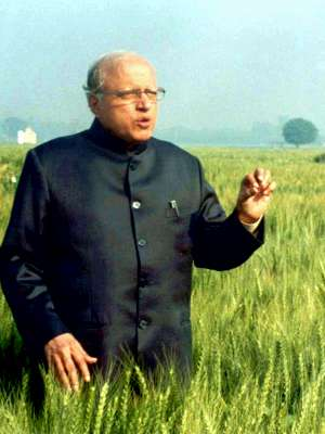 Photo of M.S. Swaminathan standing thigh-deep in a field of crops, upper body facing right