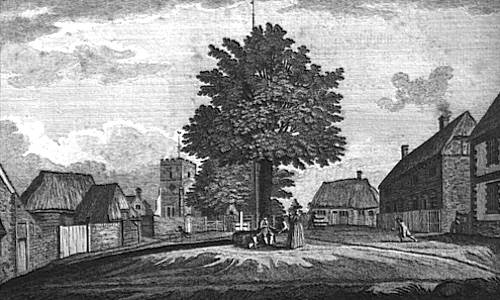 Engraving of Selborne Village Green, thatched cottages encircle a central tree flagpole, villagers, with church in background,