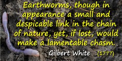 Gilbert White quote: Earthworms, though in appearance a small and despicable link in the chain of nature, yet, if lost, would ma