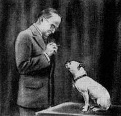 Illustration of Willis Whitney curious about the behaviour of a dog