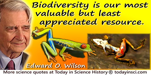 Edward O. Wilson quote: Biodiversity is our most valuable but least appreciated resource.